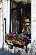 Quebec Photographer Prints - Window Flowers Print by John Rizzuto