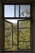 Gouzel - - Window