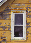 Clapboard House Photo Framed Prints - Window in Abandoned House Framed Print by Jill Battaglia