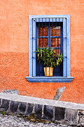 Doors Metal Prints - Window in San Miguel de Allende Mexico Metal Print by Carol Leigh