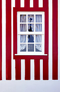 Painted Wood Prints - Window on Stripes Print by Carlos Caetano