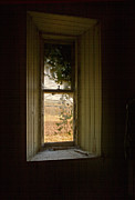 Liz  Alderdice - Window On The Past