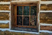 Window Reflection Print by Paul Freidlund
