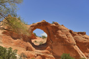 Americans Photo Framed Prints - Window Rock Arizona Framed Print by Christine Till