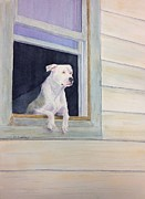 Staffordshire Bull Terrier Paintings - Window Watcher by Mary Gehley