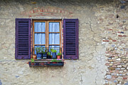 Weathered Shutters Framed Prints - Window with Potted Plants of Rural Tuscany Framed Print by David Letts