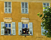 Windowboxes In Nice France Print by Allen Sheffield