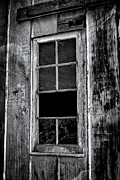 Nancie Rowan - Windows