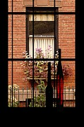 Windowsills Posters - Windows Poster by Rachel Katic