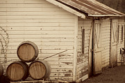 Barrels Framed Prints - Wine Barrels and Rustic White Barn Framed Print by Juli Scalzi