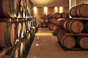 Row Photos - Wine barrels by Elena Elisseeva
