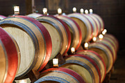 Napa Valley Vineyard Prints - Wine Barrels Print by Francesco Emanuele Carucci