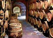 Sparkling Wines Posters - Wine Barrels in the Wine Cellar Poster by Elaine Plesser