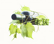Grape Vine Photo Originals - Wine Bottle And Grapes by Ioan Panaite