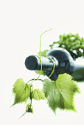 Grape Vine Photo Originals - Wine Bottle Closeup by Ioan Panaite