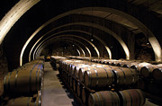 Wine Barrel Photos - Wine Cellar by Kevin Miller