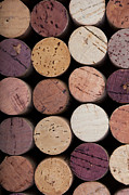Grape Vineyard Photo Prints - Wine corks 1 Print by Jane Rix