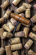 Corkscrew Metal Prints - Wine corks celebration Metal Print by Garry Gay