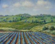Henry David Potwin - Wine Country