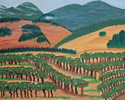 California Vineyard Paintings - Wine Country IV by Kathleen Fitzpatrick