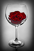Glass Reflecting Metal Prints - Wine glass with rose Metal Print by Elena Elisseeva
