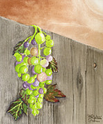 Watercolors - Wine on the Vine by Rich Stedman