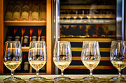 Stemware Photos - Wine tasting  by Elena Elisseeva