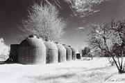 Infrared Framed Prints - Wine Vats Rutherglen Framed Print by Linda Lees