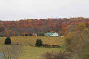 Winery In Virginia At Fall Print by Renee Braun