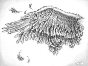 Pen And Ink Drawings Metal Prints - Wing Metal Print by Adam Zebediah Joseph