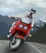 Marlene Watson Metal Prints - Winston the dog goes on the road Metal Print by Marlene Watson