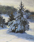 Snow Covered Pine Trees Prints - Winter Adornments Print by Anna Bain