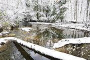 Rushing Stream Acrylic Prints - Winter along Cranberry River Acrylic Print by Thomas R Fletcher