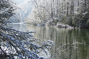 Williams River Scenic Backway Prints - Winter along Williams River Print by Thomas R Fletcher