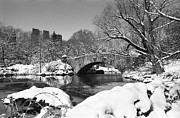 Pond In Park Framed Prints - Winter at Gapstow Bridge Framed Print by Cornelis Verwaal
