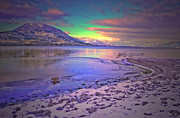 Tara Turner - Winter at Okanagan Lake