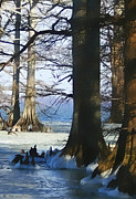 Bonnie Willis - Winter at Reelfoot Lake