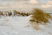 Winter Landscapes Photos - Winter at the Beach 3 by Heiko Koehrer-Wagner