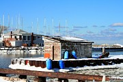Winter At The Olcott Beach Fishing Shack Print by Michael Allen
