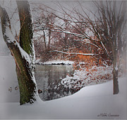 Winter At The Pond Print by Mikki Cucuzzo