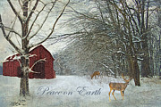 Barn Digital Art Metal Prints - Winter Barn 2 - Peace on Earth Metal Print by Lianne Schneider