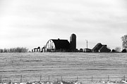 Yumi Johnson - Winter Barn in Black and...