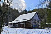 Winter Barn Print by Susan Leggett