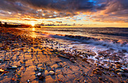 Pebbles Posters - Winter Beach Sunset Poster by Alexis Birkill
