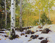 Vibrant Color Prints Paintings - Winter beauty Sangre de Mountain 2 by Gary Kim