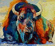 Bulls Painting Framed Prints - Winter Bison Framed Print by Marion Rose