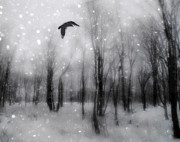 Crow Image Prints - Winter Bliss Print by Gothicolors And Crows
