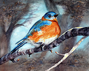 Bluebird Painting Originals - Winter Bluebird by Ruth Bodycott