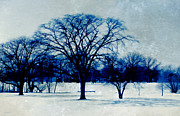 Snow-covered Landscape Digital Art Posters - Winter Blues Poster by Shawna  Rowe
