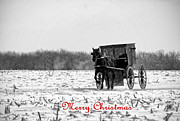 Horse And Buggy Prints - Winter Buggy Merry Christmas Print by David Arment